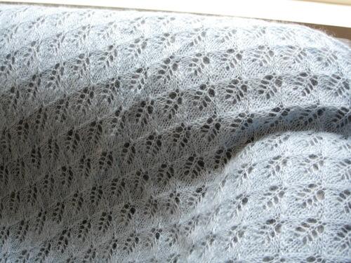 Close up of Birch